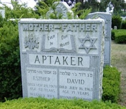 Esther (Fera) and David Aptekar Gravestone